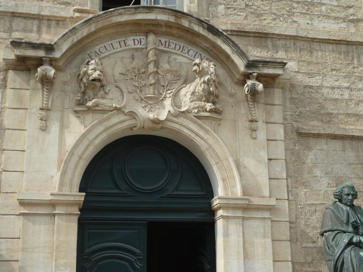Visite Montpellier 30 05 2017 LDR_10